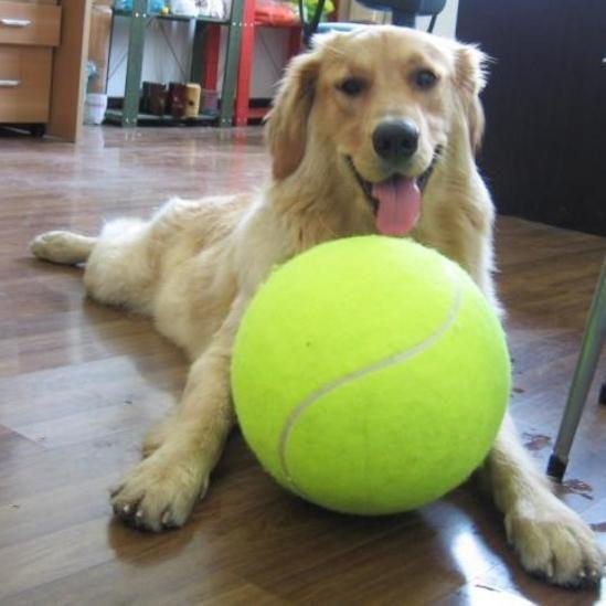 Inspire Uplift Doggy Jumbo Ball Doggy Jumbo Ball Dog Toy Ball