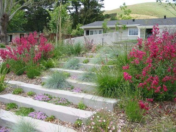 allée de jardin en pente escalier-pente-dalles-pierre-bordure-florale