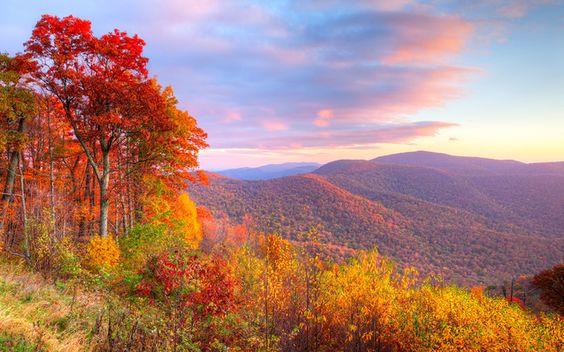 The Best Fall Destinations (Besides New England)