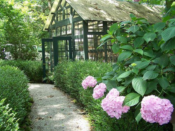Susanne Hudson's conservatory, with hydrangeas.  via Tara Dillard.