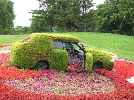car in flowers
