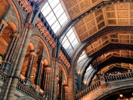 """Long over due #visit to the @NHM_London  yesterday! #love always! Spending the day #drawing from #inspiration"""