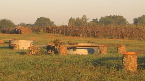 Batey Farms in Murfreesboro will celebrate the fall season with its annual corn maze and pumpkin patch.