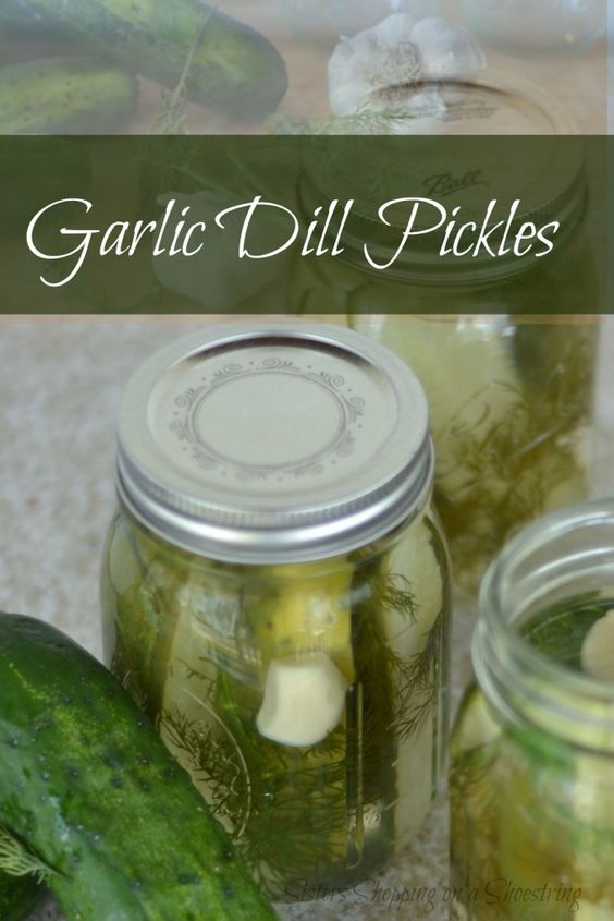 Garlic Dill Pickles Canning Recipe Homemade dill garlic pickles are easy to make and much tastier than store-bought. Click through for this awesome recipe... Sisters Shopping on a Shoestring