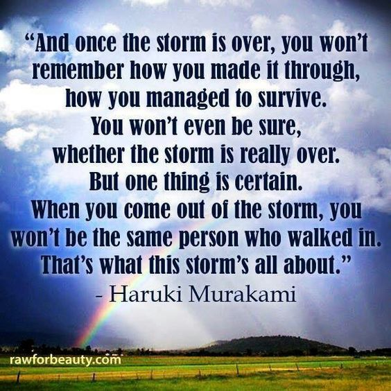 Quotes About Surviving The Storm Daily Inspiration Quotes