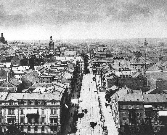 Planken Mannheim vom Wasserturm aus 1895