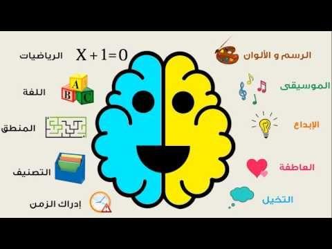 وظائف شقي الدماغ الأيمن و الأيسر Brain Parts Brain Parts