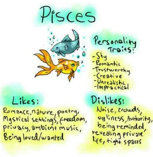 Pisces: #Pisces the Fish. >>> I'm not sure about the noise, I have a big family so it's never quiet, only at certain times and even then I don't like to keep it absolutely quiet, instead I put the TV on low volume or something to fill the silence. And I'm not too private but the rest, definitely.