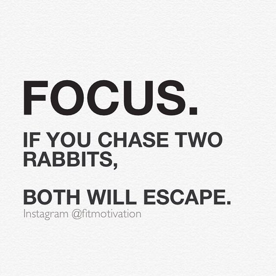 Focus if you chase two rabbits both will escape