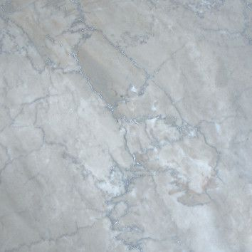 "MS International 12"" x 12"" Polished Marble Tile in Temple Grey"