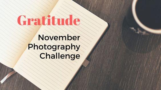 Gratitude – November Photography Challenge via @prophototutor