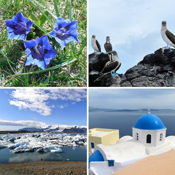 #travel #world #blue #blau #animal #plants #nature #eht #eberhardt_travel #richtigreisen #island #greece #iceland