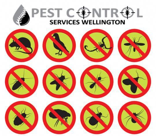 Organic Garden Guide To Controlling Pests For Your Vegetables Pest Control Pest Control Services Pests
