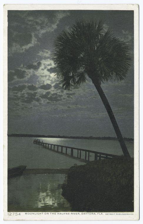 Moonlight on the Halifax River, Daytona, Fla. (1908-1909)