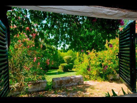 Quinta - Vila Fresca de Azeitão