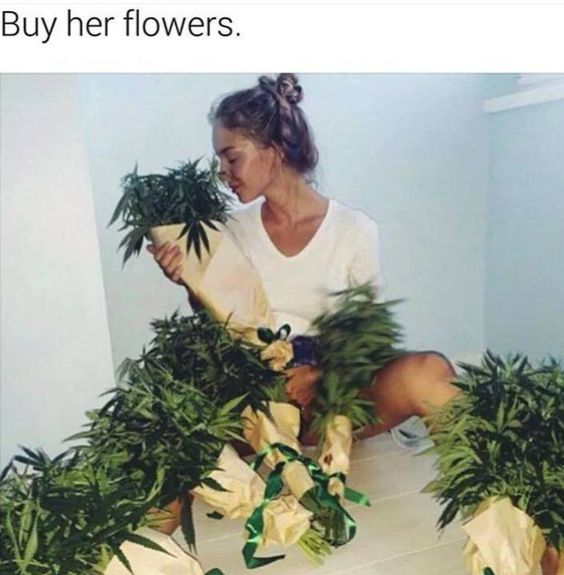 Did you like ? Check out my profile for more https://www.pinterest.com/NinannaS2/ #stoners #weed #cannabis