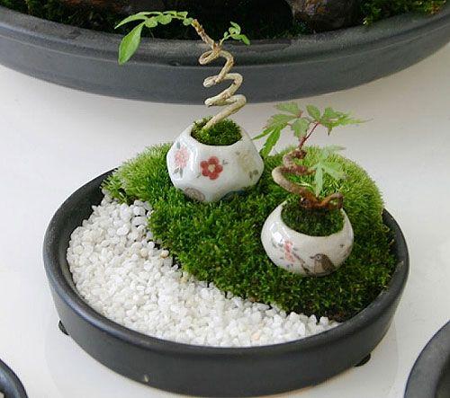 ideias de jardim japones : ideias de jardim japones:Pinterest • O catálogo de ideias do mundo todo