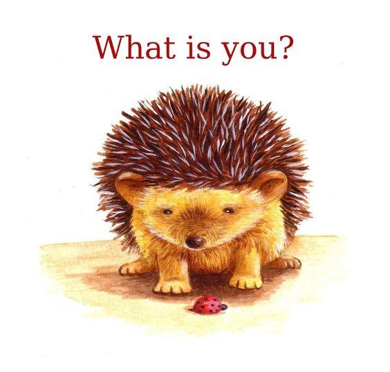 Hedgehog Art, What is you, via Etsy.