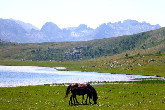 Le Lac de Nino : Corse : les plus beaux paysages de l'île - Linternaute
