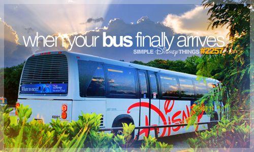 Image result for Track Disney Resort Buses pinterest