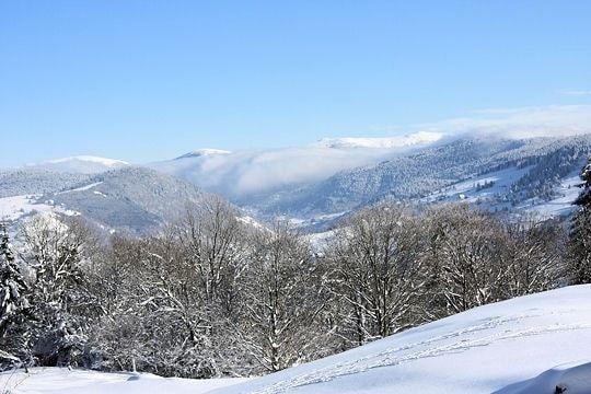 Panorama sur les Vosges