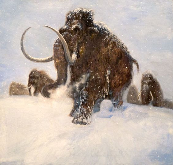 Wooly Mammoth. Image © by Philip Newsom.