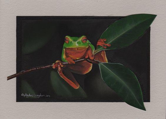 Green tree frog, by Shelley Lee Langdon.   https://www.facebook.com/shelleeart