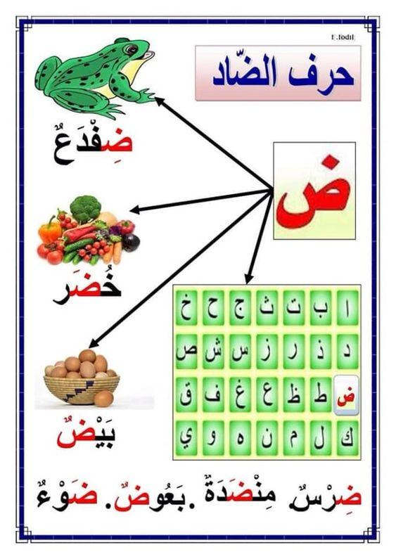بطاقات حروف الهجاء Islamic Kids Craft Arabic Kids Learning Arabic