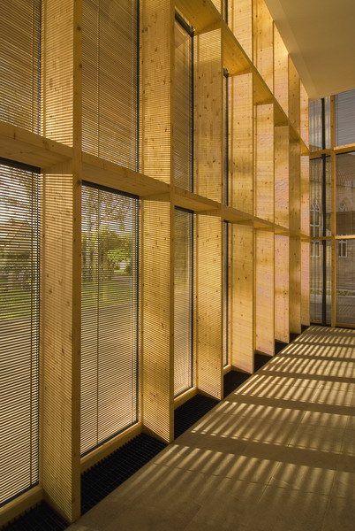 Wood Mullions For Windows : Interior façade treatment wood panel mullions with okalux