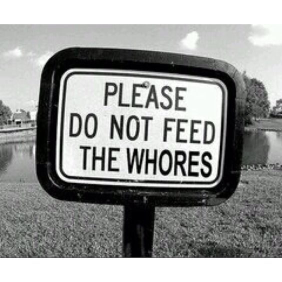 Please do not feed the whores.: Funny Things, Don T Feed, Funny Shit, Funny Signs, Fat Whores, Funny Stuff, Food Network/Trisha, Funnystuff