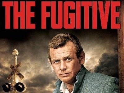 Image result for tv series the fugitive