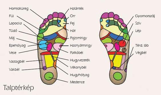 OTO Adore Foot, Az OTO legújabb, intelligens talpmasszázs készüléke