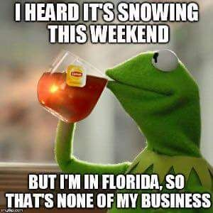 The 10 Best Florida Winter Memes - I Love South Florida