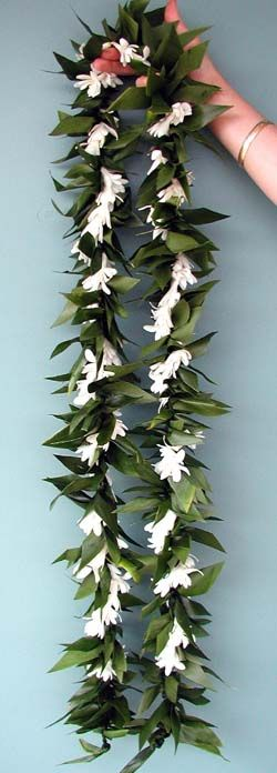 tropical hawaiian flowers by a special touch lahaina florist kaanapali flowers tropical. Black Bedroom Furniture Sets. Home Design Ideas