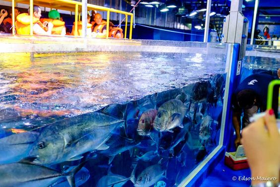 neste deck podemos observar os peixes que nadam a nossa volta. Ao fundo vemos um dos botes que circulam pelo aquário