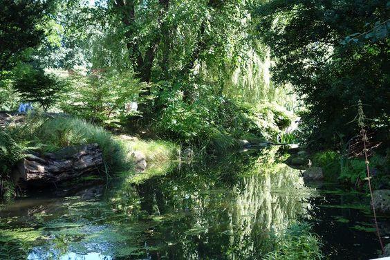 Loki-Schmidt-Garten.
