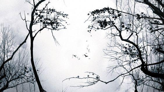 Image result for sandra bullock premonition poster