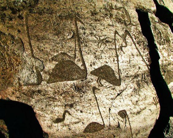 Онежские петроглифы (Бесов Нос) | Марийский туристический портал