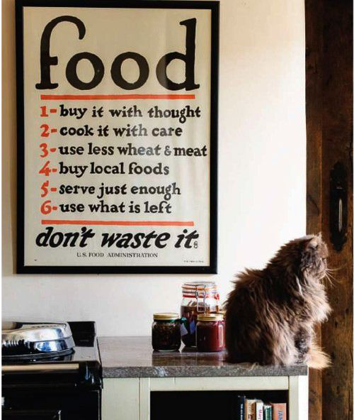 All Consuming food poster. Plus a very fluffy cat.