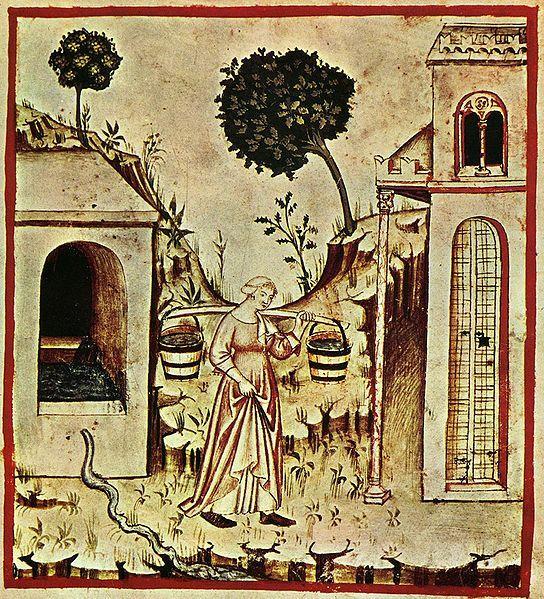 Carrying water, Tacuina Sanitatis, XIV secolo