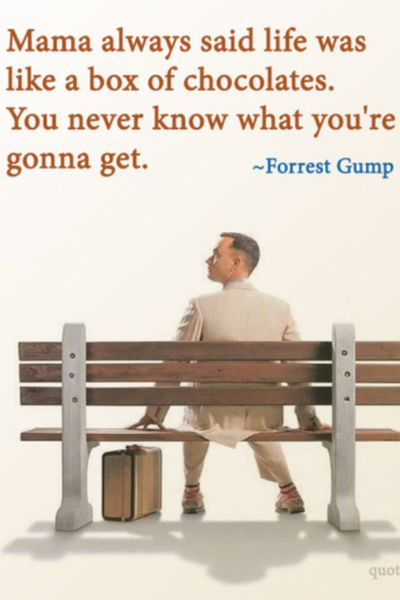 forrest gump package of chocolate quote