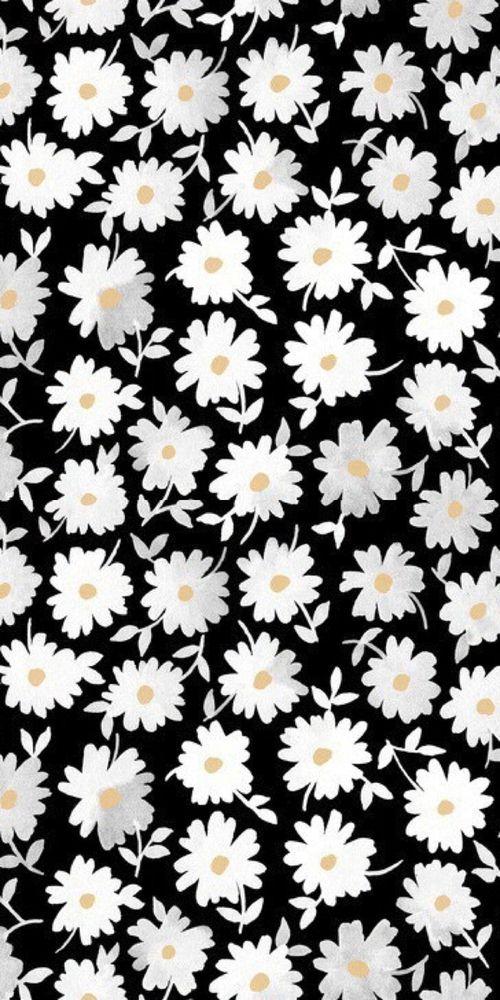 print, pattern, modern floral, monochrome, design, daisy, illustration