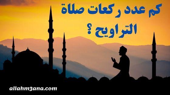 كم عدد ركعات صلاة التراويح مع الشفع والوتر آراء الأئمة الأربعة الله معنا Allahm3ana Home Decor Decals Decor Enjoyment