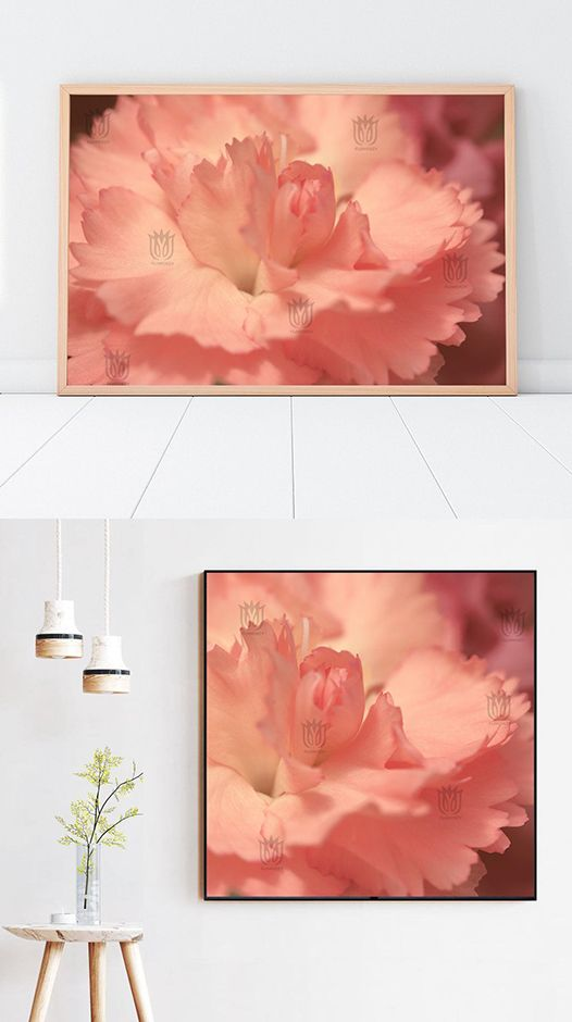 Peony Flower Photography Prints Printable Coral Wall Art Coral Floral Home Decor Coral Peony Digital Download Art