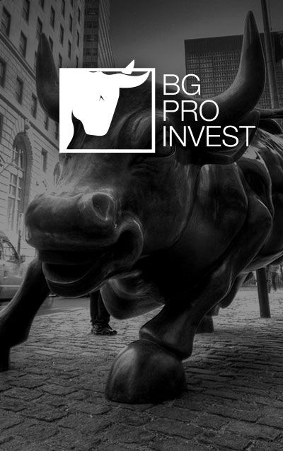 http://dotslave.com/bgproinvest-project27.html