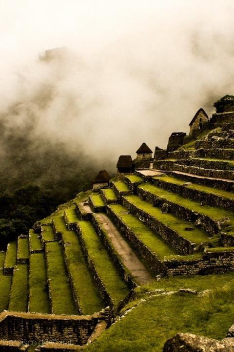 Machu Picchu Side Terraces by Francisco Del Corral
