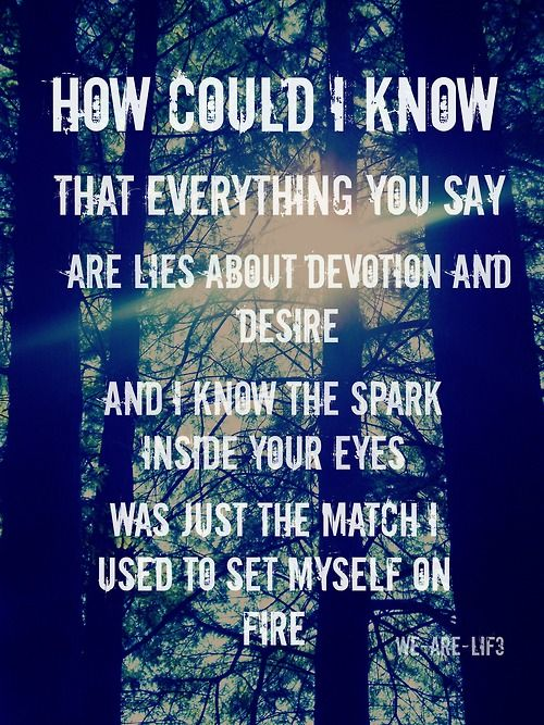 Devotion and Desire- Bayside