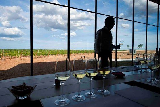 La Ruta del Vino de Rueda presenta la diversidad de su oferta turística en Intur https://www.vinetur.com/2014112417470/la-ruta-del-vino-de-rueda-presenta-la-diversidad-de-su-oferta-turistica-en-intur.html