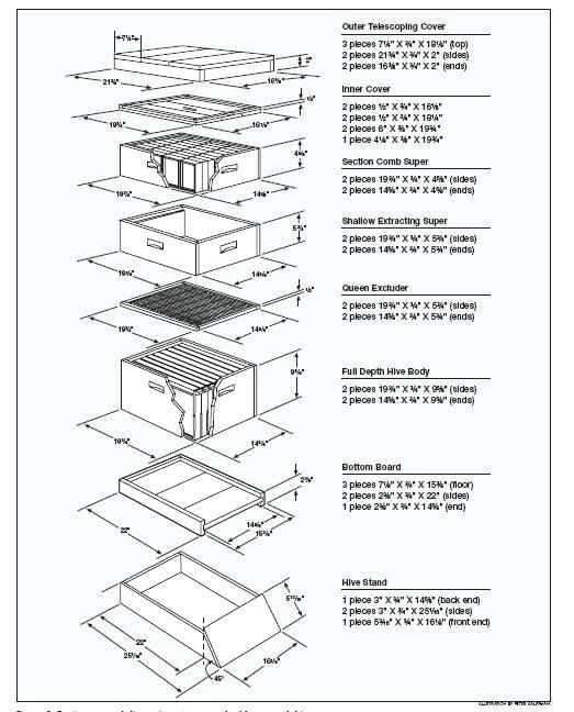 Bee Hive Construction Pdf Google Search Bee Keeping Bee Hive Plans Bee Hive