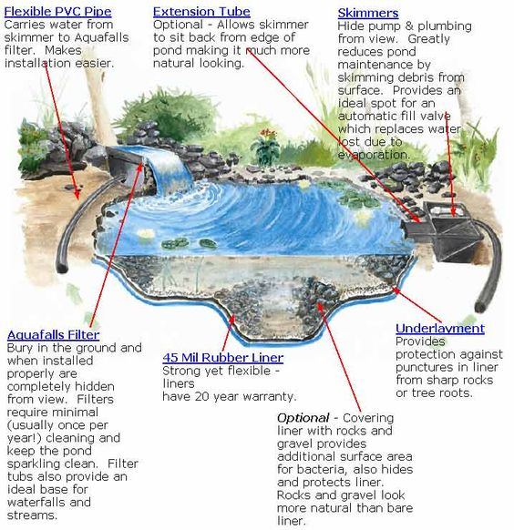 Ponds water garden and stockings on pinterest for Build your own garden pond